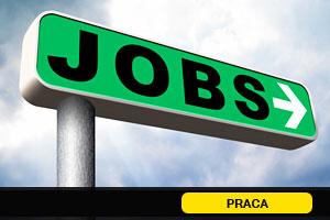 idx-job