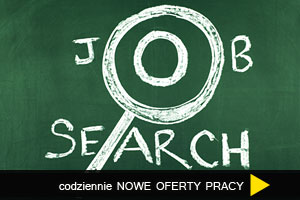 idx-job29